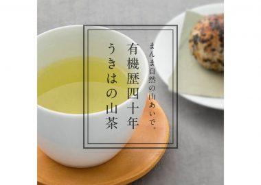 有機歴40年、福岡県うきは市で育てられた うきはの山茶 /></a>     <a href=